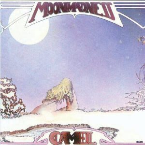 camel_moonmadness